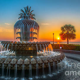 Dale Powell - Charleston Pineapple Sunrise