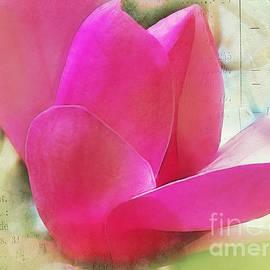 Judi Bagwell - Pink and Green