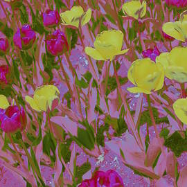 Dora Sofia Caputo Photographic Art and Design - Pink and Yellow Tulips Pop Art