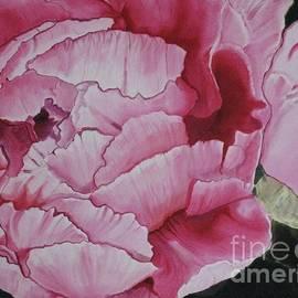 Kathy Goodson - Pink Camellia