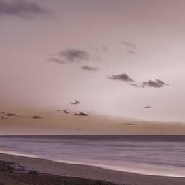 Judy Hall-Folde - Pink Dawn