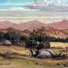 Mikhail Savchenko - Pink Desert Spring