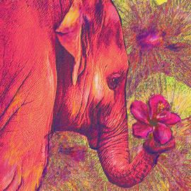 Jane Schnetlage - Pink Elephant