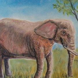 Richard Goohs - Pink Elephant