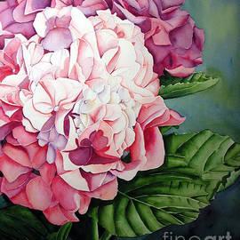 Elizabeth  McRorie - Pink Hydrangea