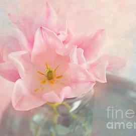 Carolyn Rauh - Pink Pastel Tulips