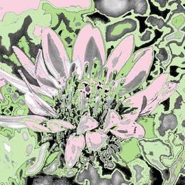 Aliceann Carlton - Pink Planet Sunflower