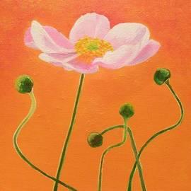 Anne Gardner - Pink poppy