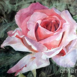 Greta Corens - Pink Rose Greg