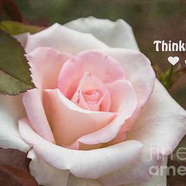 Arlene Carmel - Pink Rose Note Card