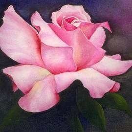 Phyllis Henson - Pink Rose