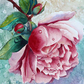 Karen Mattson - Pink Rose With Water Drops