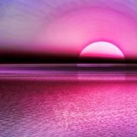 Tyler Robbins - Pink Sunset