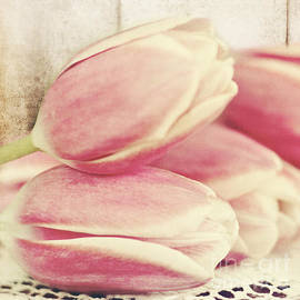 Pam  Holdsworth - Pink Tulips