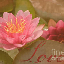 Layla Alexander - Pink Water Lily Love