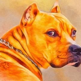 Scott Wallace - Pit Bull Portrait