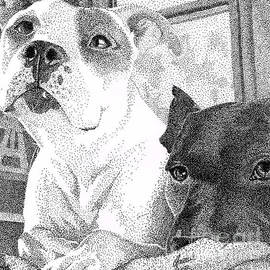 Isabelle Auger - Pitbull couple