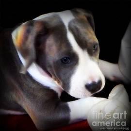 Bobbee Rickard - Pitty Lil Puppy