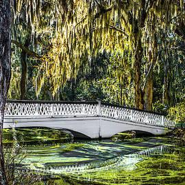 Optical Playground By MP Ray - Plantation Bridge