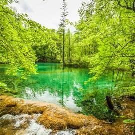 Benjamin Hardman - Plitvice Lakes. Enough Said