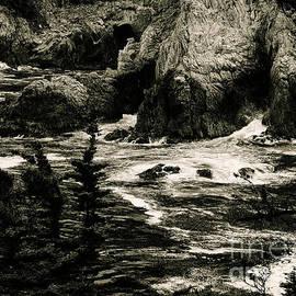 Chris Berry - Point Lobos State Park