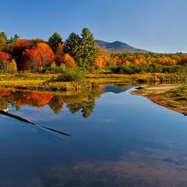 Shelle Ettelson - Pond Colors
