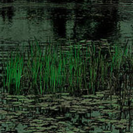David Patterson - Pond Grasses Panorama