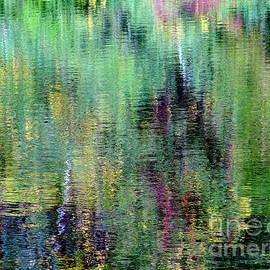 Ed Weidman - Pond Palette