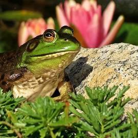 MTBobbins Photography - Pondside Frog