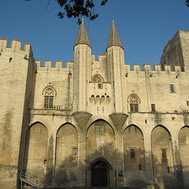 Pema Hou - Popes Palace in Avignon