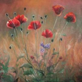Sorin Apostolescu - Poppies