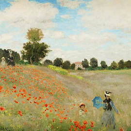 Celestial Images - Poppy Field  Near Argenteuil