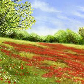 Sarah Dowson - Poppy field