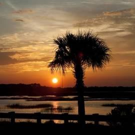 Scott Hansen - Port Royal Sunset