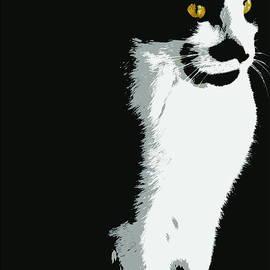 Kathy Barney - Portrait of a Cat