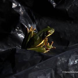 Karen Roberson - Portrait of a frog