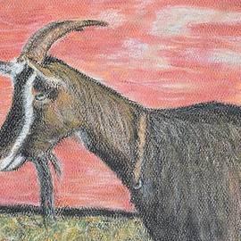 Renee Helin - Portrait of a Goat