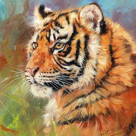 David Stribbling - Portrait of a Young Amur Tiger