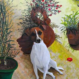 Vanda Caminiti - Portrait of Jack Russell