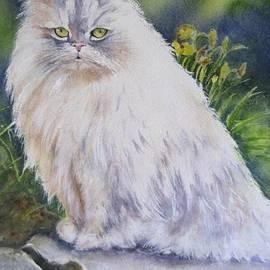 Patricia Pushaw - Portrait Of White Cat