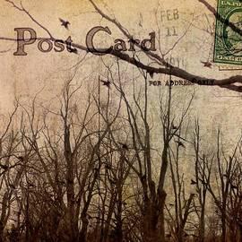 Gothicolors Donna Snyder - Postal Birds