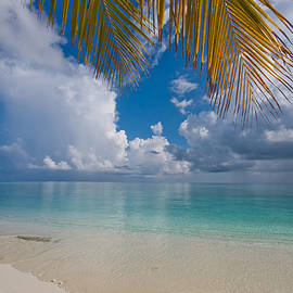 Jenny Rainbow - Postcard Perfection. Maldives