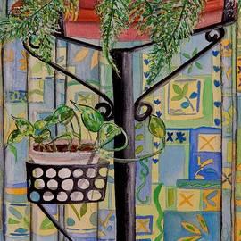 Caroline Street - Potted Plants