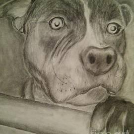 Irving Starr - Pound Dog 2