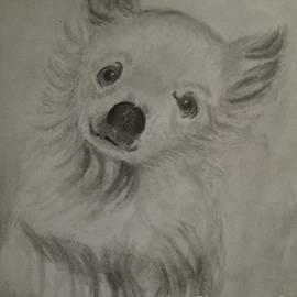 Irving Starr - Pound Dog