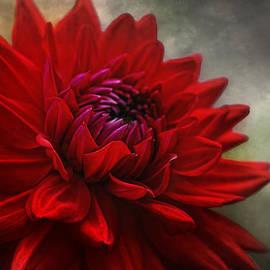 Joachim G Pinkawa - power of flower