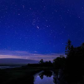 Marty Saccone - Wetland Starscape