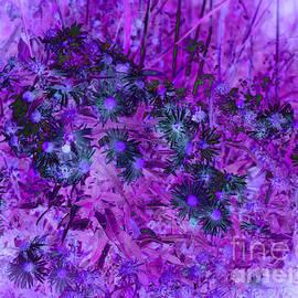 Adri Turner - Pretty Flowers Abstract - Purple