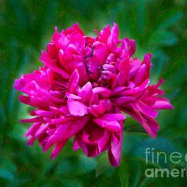 Omaste Witkowski - Pretty In Pink Garden Art by Omaste Witkowski