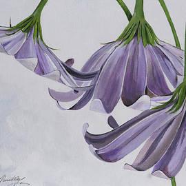 Bill Dunkley - Pretty in Purple